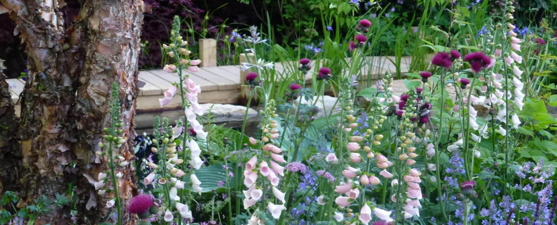 Ästhetischer Naturgarten