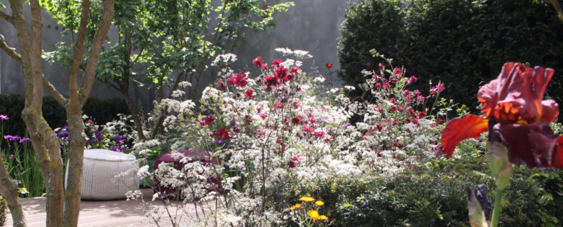 Pflanzen in der Gartenarchitektur