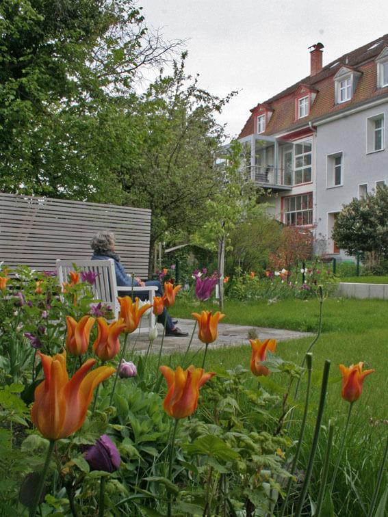 Familiengarten mit üppigem Pflanzbeet